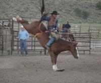4 Eagle Ranch in Wolcott, CO