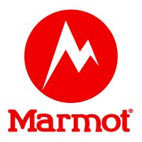 Marmot in Vail Village, CO