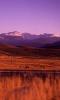 image 8 - 4 Eagle Ranch gallery