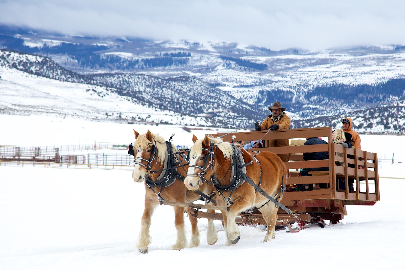 4 Eagle Ranch Tuesday Horse Drawn Sleigh Ride Chili Lunch