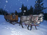 frisco adventure park horse drawn sleigh ride snowshoeing sledding family fun hot spots in. Black Bedroom Furniture Sets. Home Design Ideas