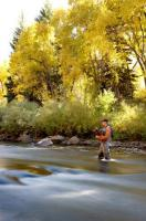 Gore Creek Fly Fisherman in Lionshead, CO