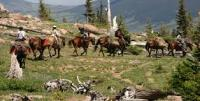 A.J. Brink Outfitters in Gypsum, CO