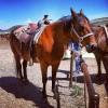 Saddleback Ranch in Steamboat Springs, CO