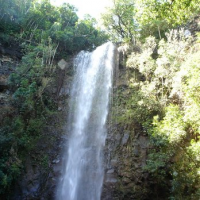 Discover Hawaii Tours in Kauai, HI