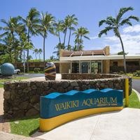 The Waikiki Aquarium in Oahu, HI